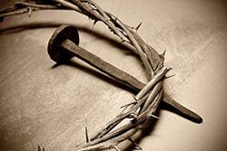 crown of thorns 5